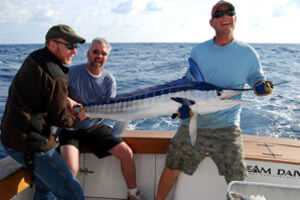 Big Tahuna guests enjoy the excitement of catching and releasing a white marlin off Cape Hatteras.